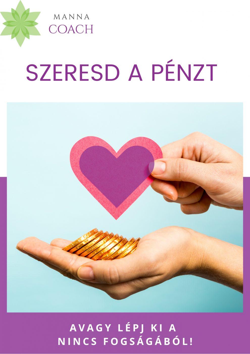 Szeresd a pénzt e-book borító